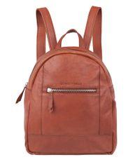 Cowboysbag-Rugzakken-Backpack Georgetown-Rood