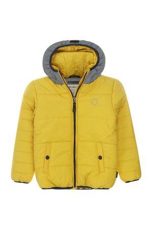 Nout Yellow