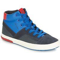 sneakers Geox J ALONISSO BOY